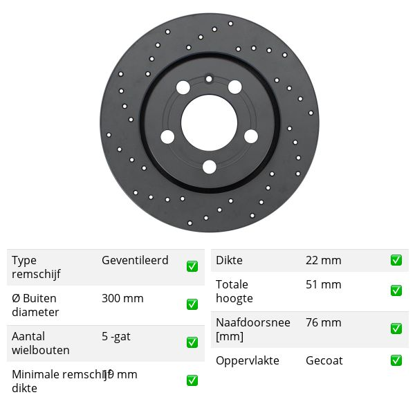 Geperforeerde remschijven achterzijde Sport kwaliteit VW VOLKSWAGEN AMAROK (2HA, 2HB, S1B, S6B, S7A, S7B) 3.0 TDI 4motion